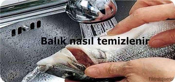 Balık nasıl temizlenir.