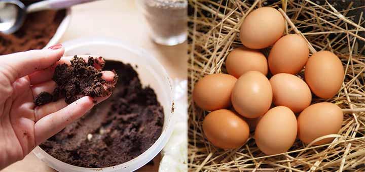 Yumurtalı Kahve Maskesi (Yorgun ciltler için)