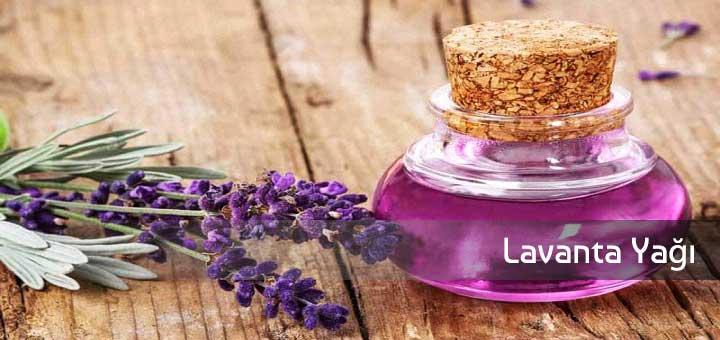 Lavanta yağı faydası ve uygulanması